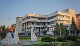 Primăria Mioveni, program special de Ziua Unirii Principatelor