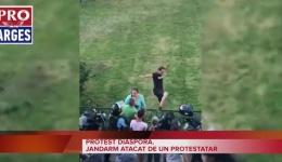 Protest Diaspora. Imaginile care au făcut senzație pe internet cu jandarmul lovit din spate de un protestar